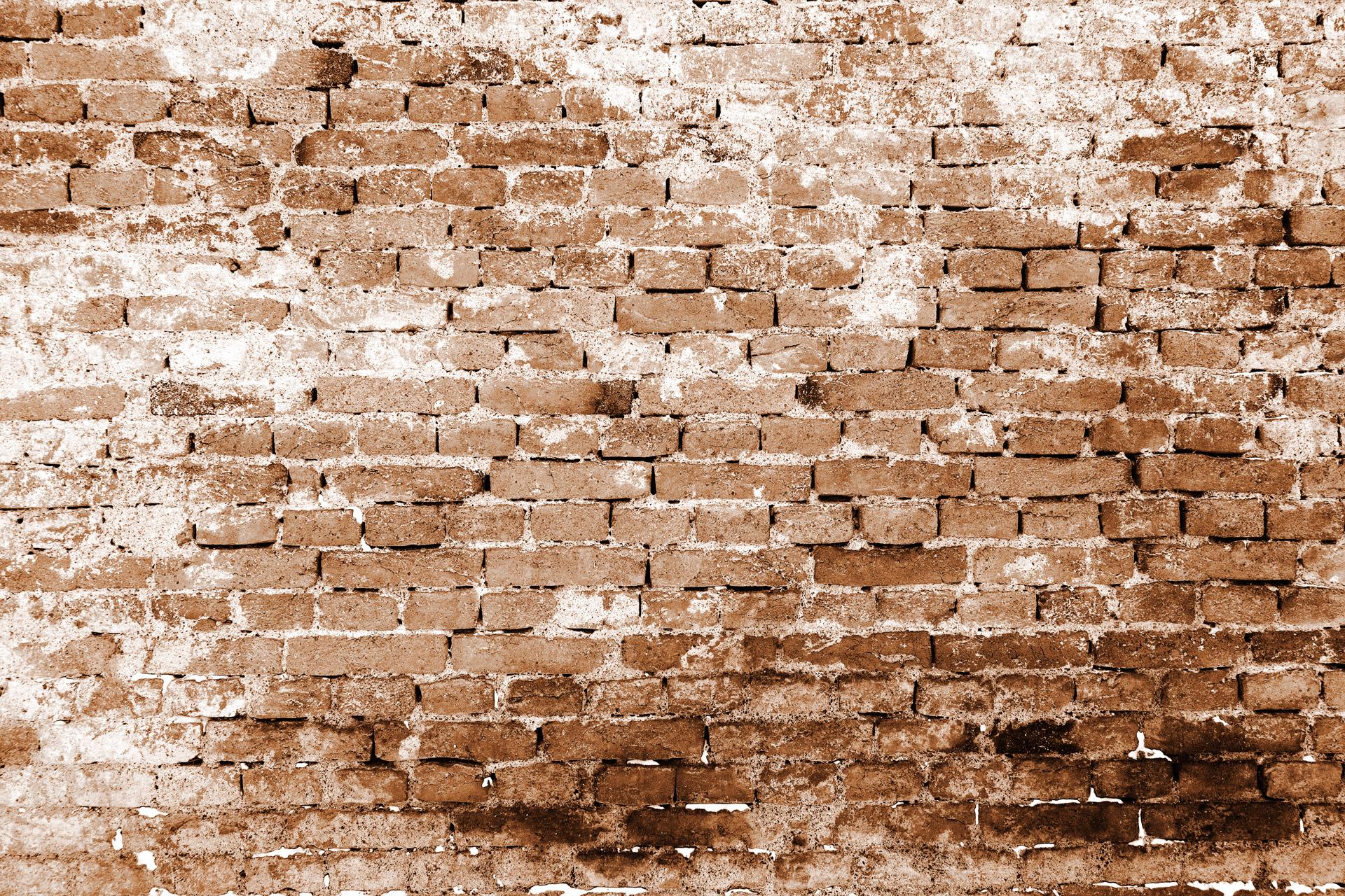 Schimmel Muur Verwijderen : Zo verwijder je schimmel op een natuurlijke manier