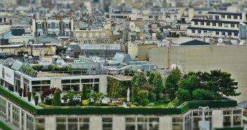 Tuin op het dak in de stad