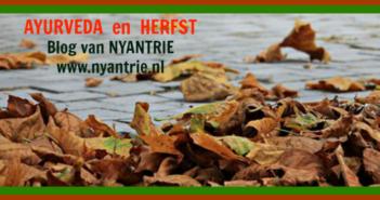 herfst-blog-foto