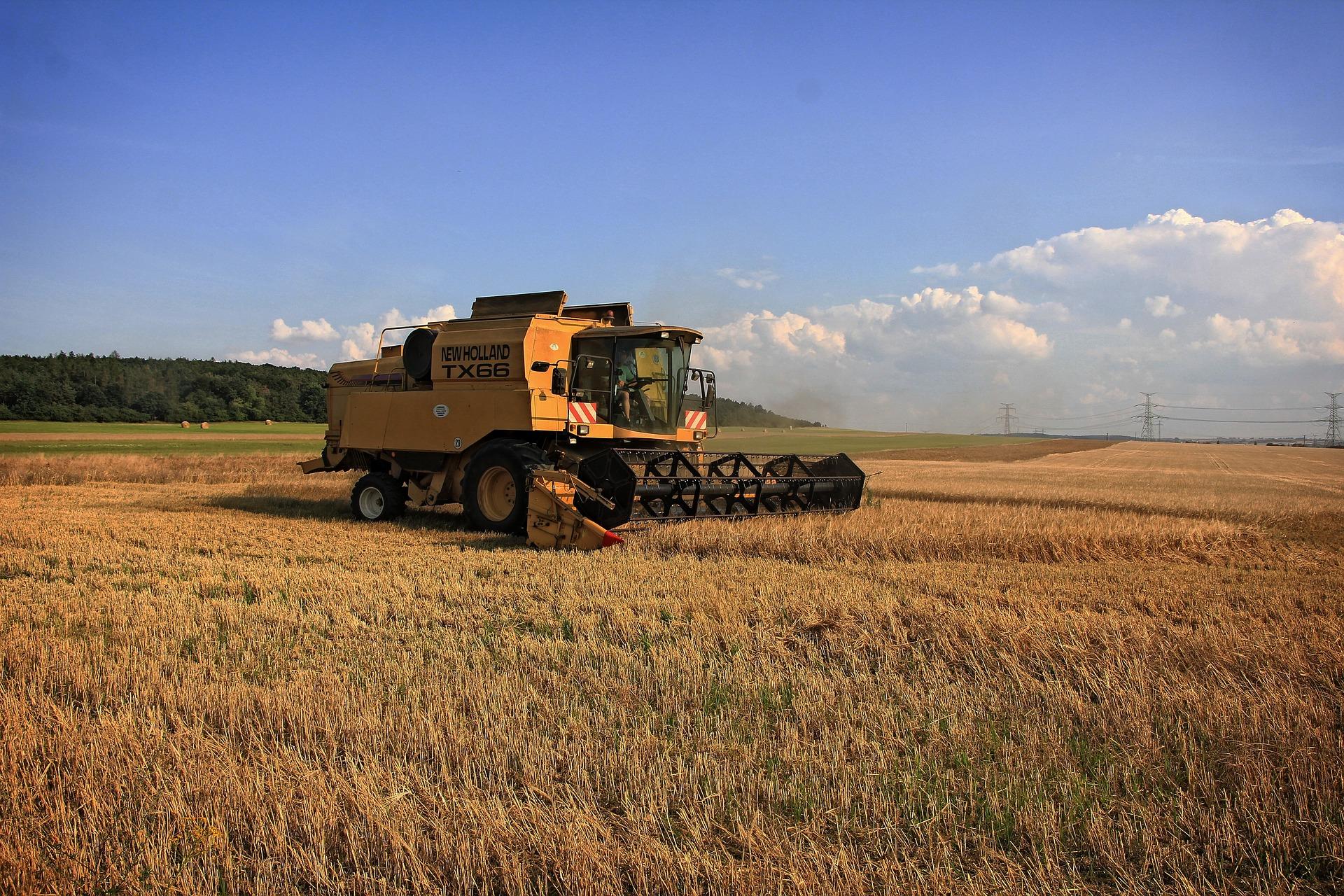 harvest-1640194_1920