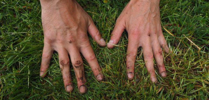 7 tips voor de luie tuinier