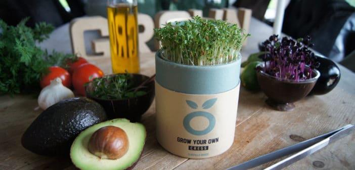 Gezonde cressen thuis kweken met de innovatieve Grow Cup