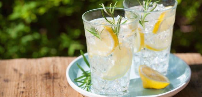 Verfrissing nodig? Maak zelf fruitwater!