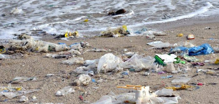 Plasticsoep: Parlement stemt voor verbod op wegwerpplastic vanaf 2021