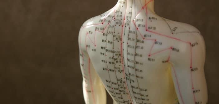 Acupunctuurmeridianen bestaan