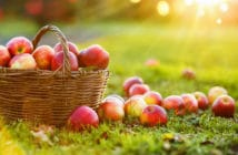 Biologisch appels